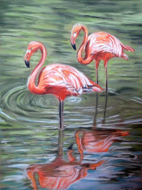 flamant rose pastel